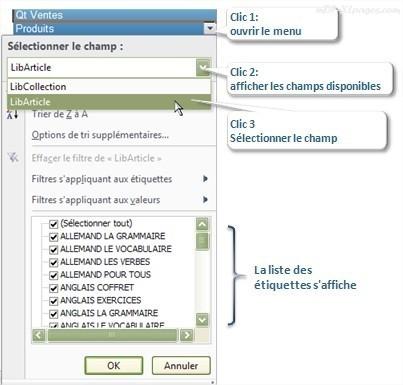 Tableaux croisés dynamiques : Accéder aux filtres