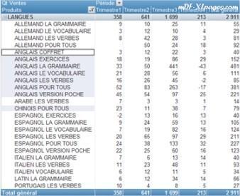 Tableaux croisés dynamiques: filtrage manuel