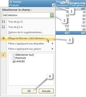 Tableaux croisés dynamiques: Supprimer un filtre
