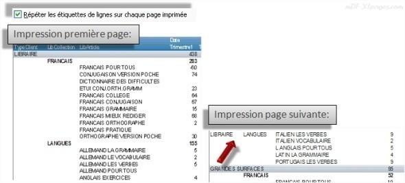 Excel Répéter les étiquettes de lignes sur chaque page   imprimée