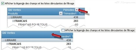 Excel Options Afficher la légende des champs et les listes de filtrage