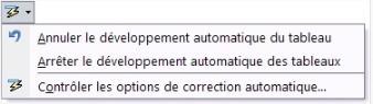 Options de corrections automatiques
