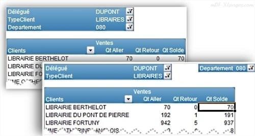 Excel TCD Mettre en forme le Filtre du Rapport