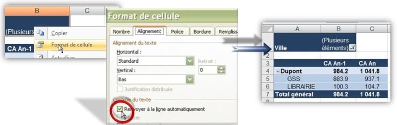 Tableau croisé dynamique - Champ Filtre